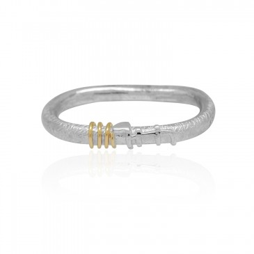Intertwined Double ring